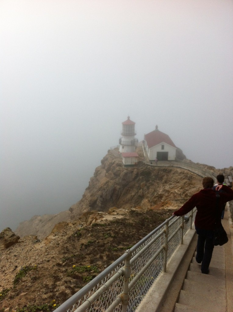 We visited Point Reyes in the fog and heard a ranger explain why it's often foggy.
