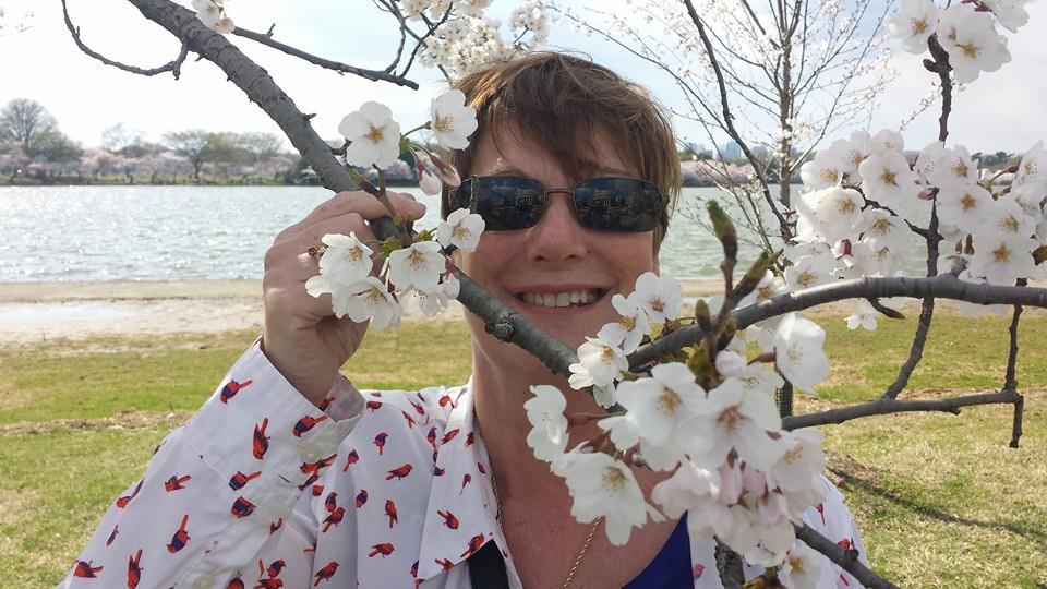 My companion and I enjoy cherry blossom season.