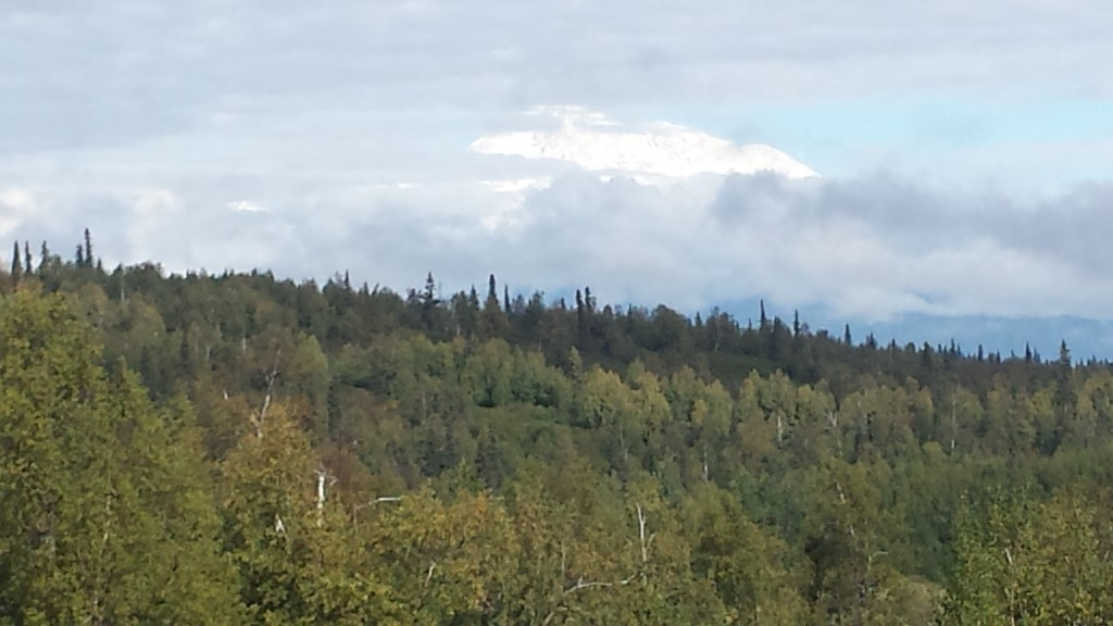 We got a better look at Denali the next day, though just briefly.