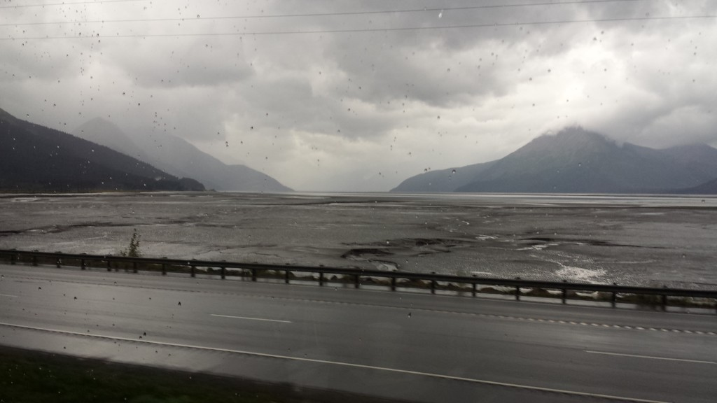 Our train ride to Denali took us past the Turnagain arm, where glacial silt has filled much of the inlet, and at low tide you see vast expanses of mud.